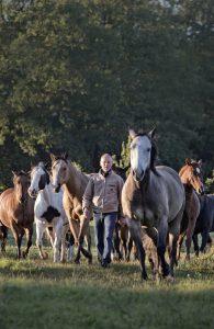 Bernd Osterhammel in seiner Herde Pferde. © Foto: Michael Boyny