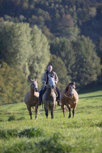 Bernd Osterhammel mit Pferden. © Foto: Michael Boyny