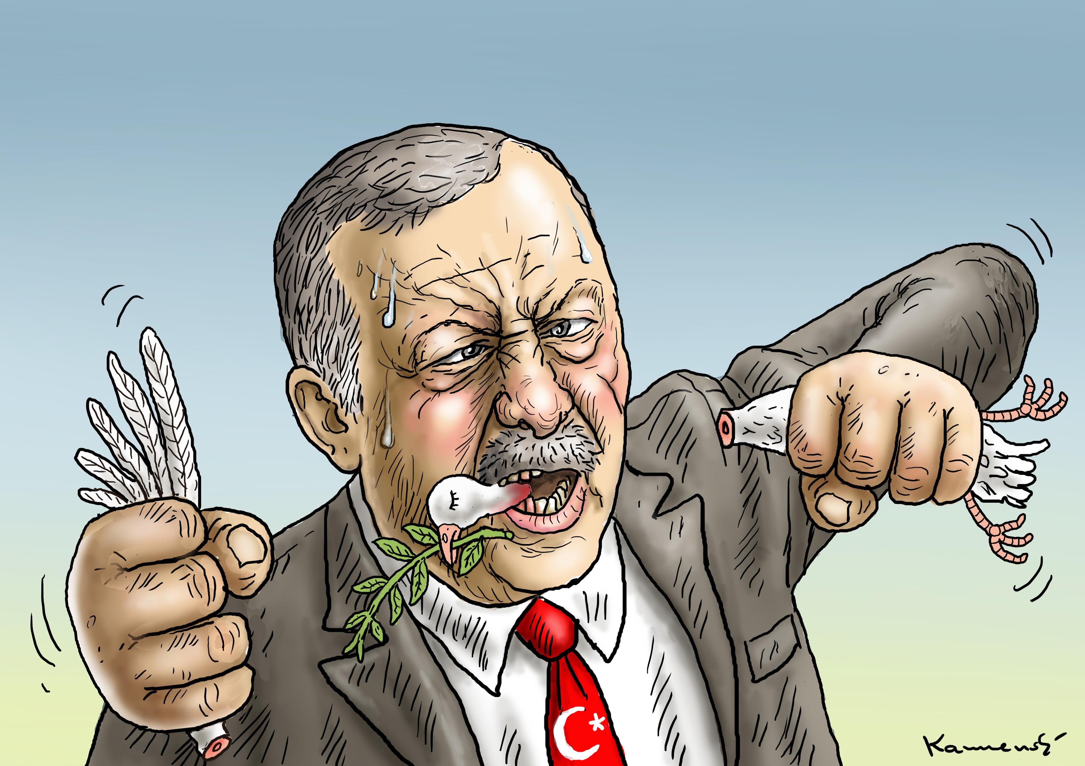 Эрдоган прикольные картинки штатах