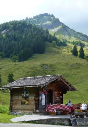 Bergidylle an der Großen Scheidegg. © Foto: Dr. Bernd Kregel