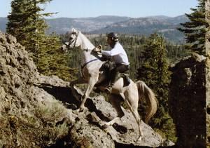 """Ein Reiter mit einem """"Bitless Bridle"""" und barhuf auf einem hundert Meilen langen Distanzritt beim U.S.-Tevis-Cup. © Logos Hall - Hughes Photography"""
