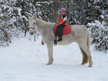 zum Dank ließ ich auch ihre kleine Tochter Samina auf meinen Rücken und führte sie sicher durch den Schnee. Mein Selbstbewußtsein war sehr gestiegen, seit mir niemand mehr die Zunge einquetschte....... 2013 © Heike Veit