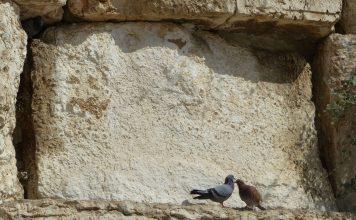 Klagemauer in Jerusalem, Israel.