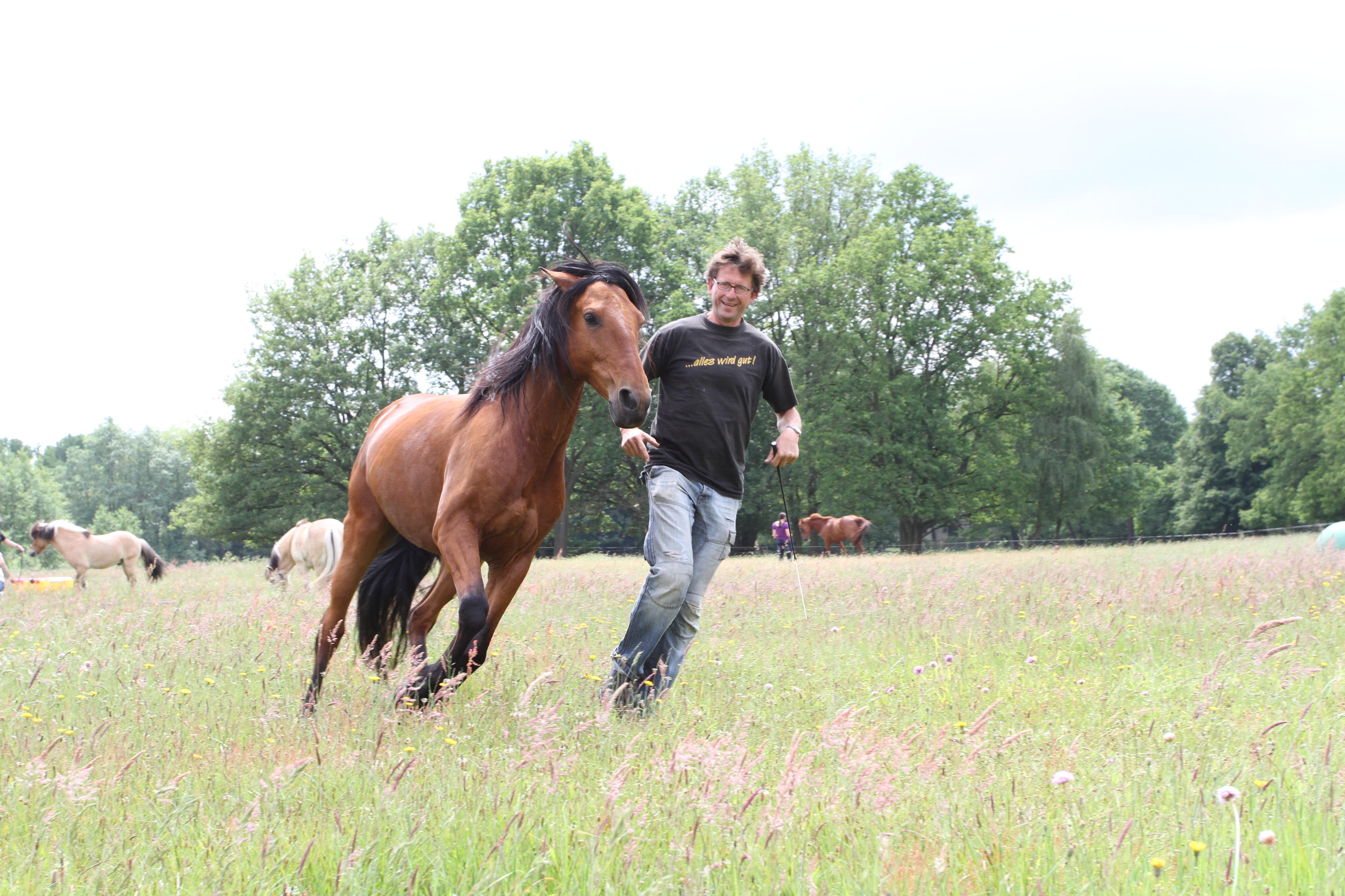 Bewegung ist gesund für Pferd und Mensch , Neu Drefahl, BU Pasche,l, © Weinzierl: Foto: van Uden