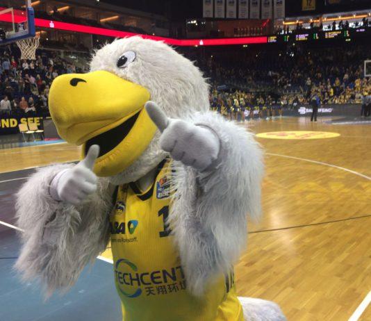 Ein Albatross in Berlin.