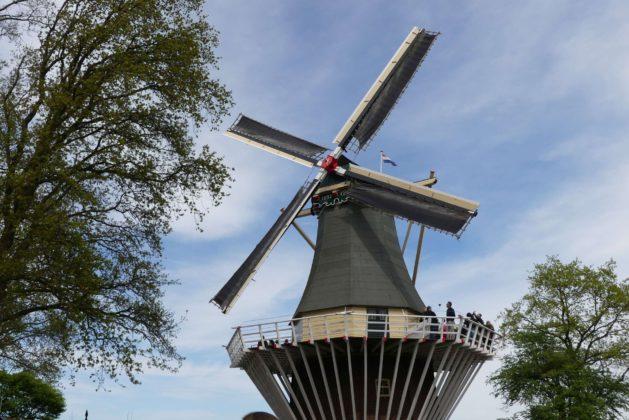 Keukenhof bei Lisse in Holland.