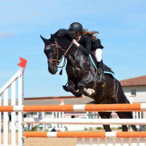 So dynamisch dieser Sprung auch aussieht und so gut die Reiterin den Pferderücken entlastet.Es ist kein Geheimnis, dass mid. 4 Pferde verschlissen werden im Training, bis man ein Pferd findet, das die Belastungengen physisch und psychisch für eine begrenzte Zeit überlebt.. . BU Bernd Paschel, © Pixabay