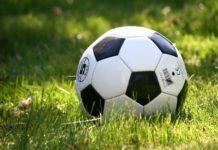 Rasenballsport