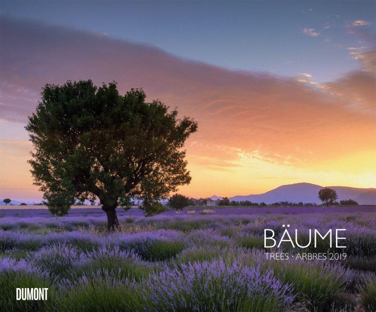 Mein Freund der Baum – Beachtliche Bäume in einem Fotokunst-Kalender 2019 von Dumont